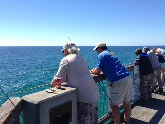 11 25 Navarre Pier Fishing Report Navarre Newspaper